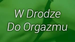 w_drodze_do_orgazmu